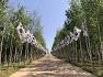 서정용기자/ 철원 DMZ평화의길 희망자들이 늘어나는 배경은 ?