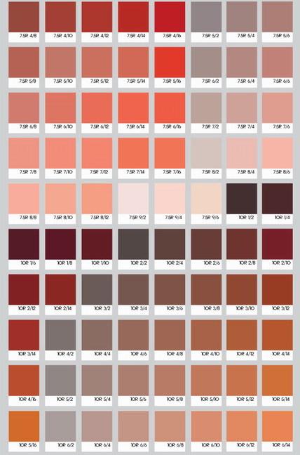 먼셀 색상표(Munsell color system)