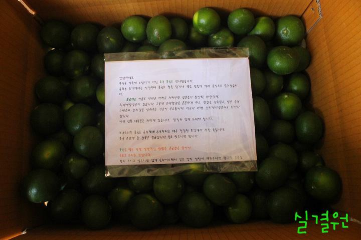 유기농 청귤(풋귤) 카드결제