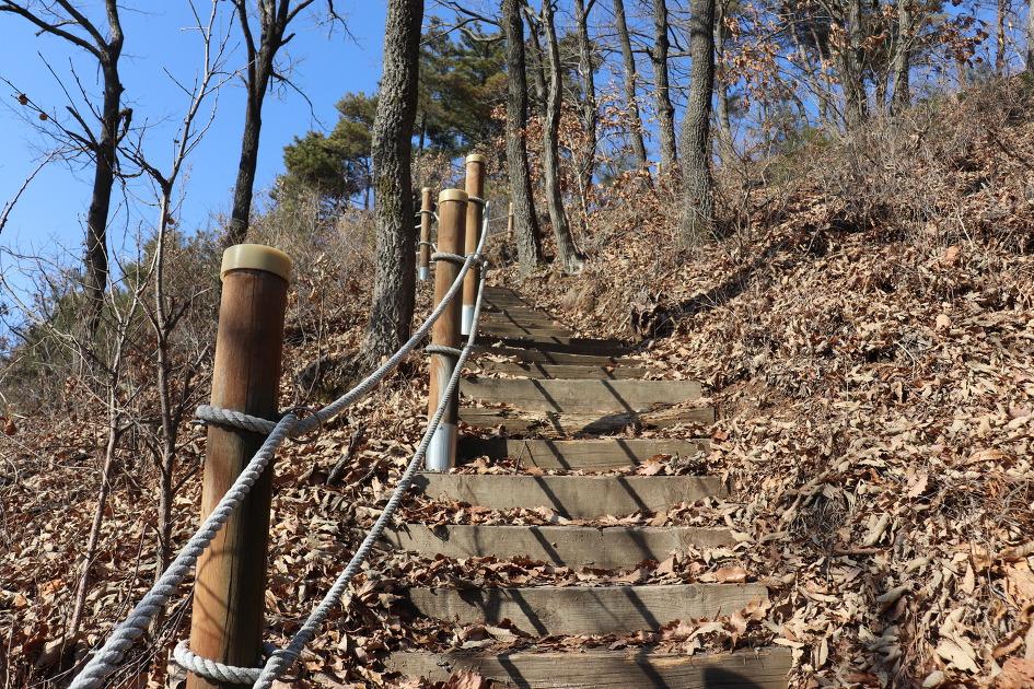 대전 둘레길 1구간(금동고개~보문산 시루봉) 등산(20200118)