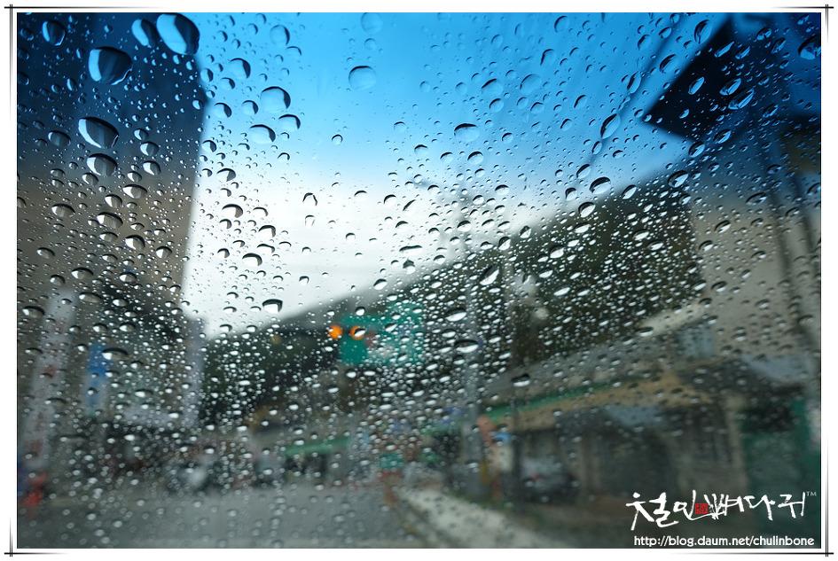 비오는날 차유리의 물방울